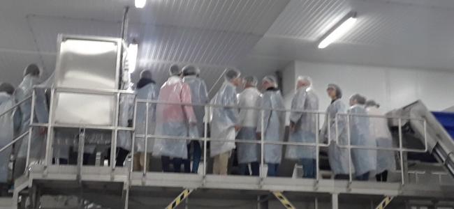 Visita às instalações da Fábrica Congelagos, SA