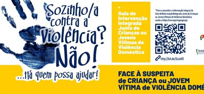 Guia de Intervenção Violência Doméstica